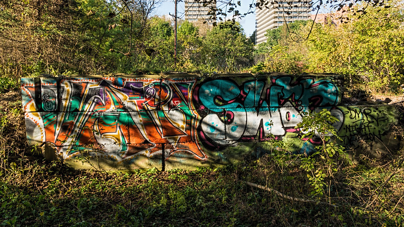 Say What?  Graffiti in the Arb - full panel