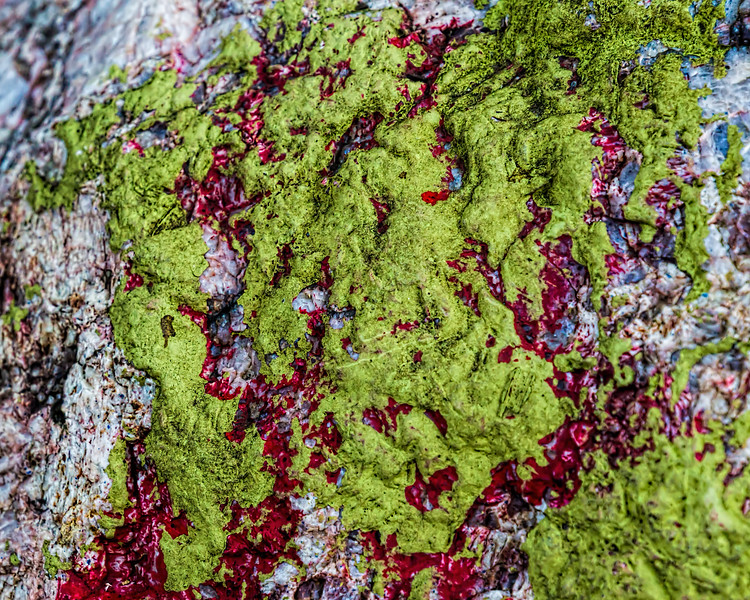 Green and red paint on white boulder