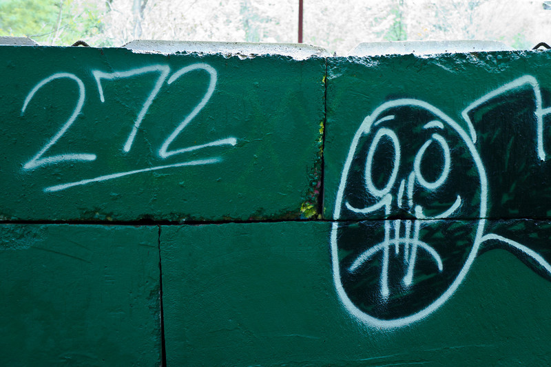 Graffiti '272'<br /> Nichols Arboretum,<br /> Ann Arbor, Michigan<br /> May, 2011