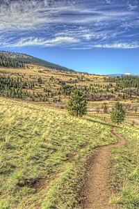 Slopes of Mount Sentinel