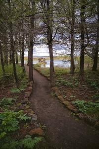 Path to the Lava Pillars