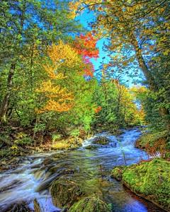 Little Carp River 2
