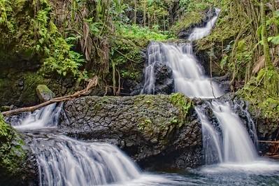 Onomoea Falls 4
