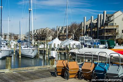 Winter at the Marina