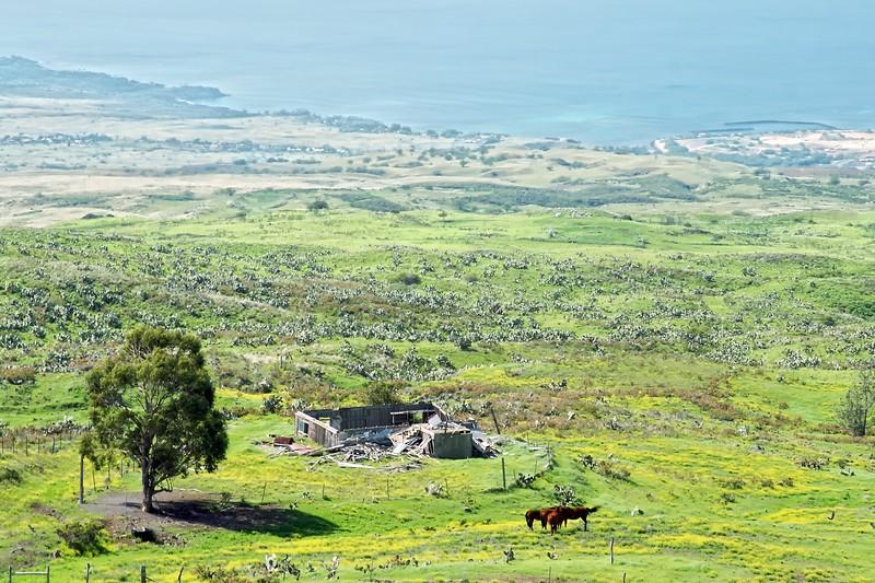 Kohala Vista (alt)