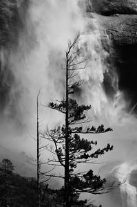 Base of Upper Yosemite Falls 2005