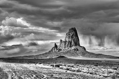 Sentinel of the Desert