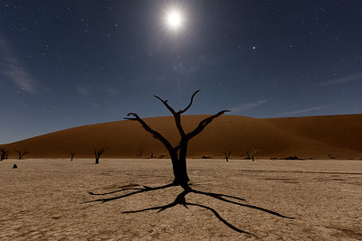 Night at Deadvlei III