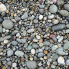 Pebble beach on Vancouver Island, Canada