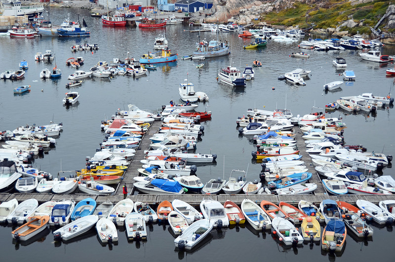 Ice-free harbour of Ilulissat, west Greenland