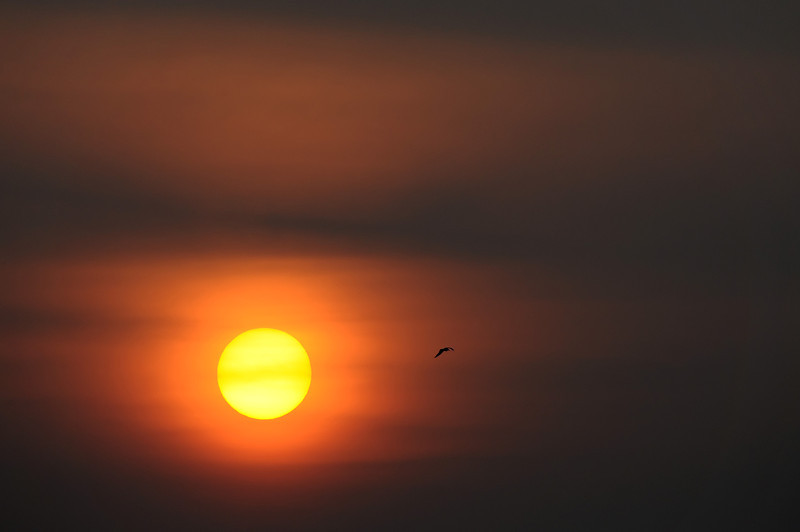 Hazy sunset, The Netherlands