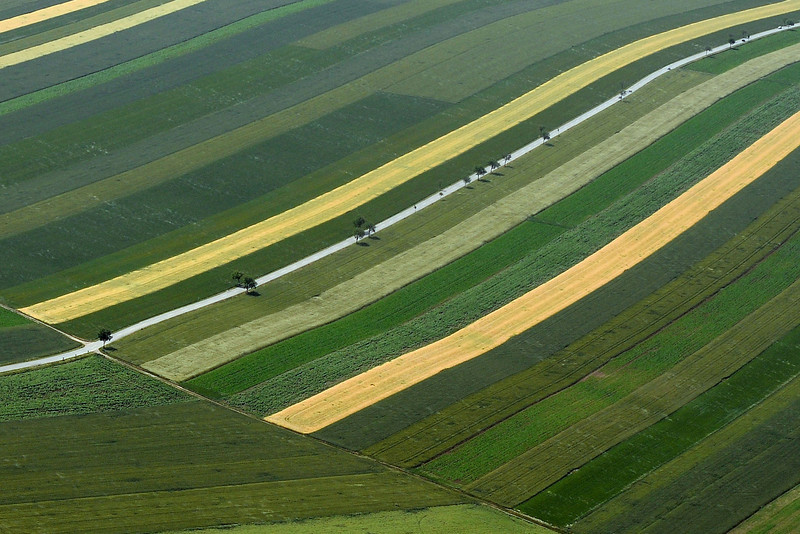 Striped countryside in the Vienna region, Austria