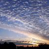 Late summer sunrise near Warmond, The Netherlands