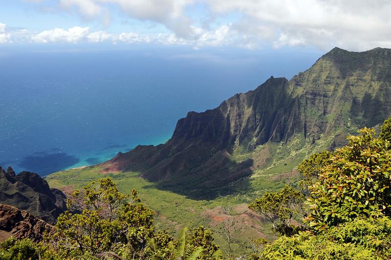 Volcanic cliffs (ca. 600 m) and verdant vegetation in Kalalau Valley in northwest Kaua'i, Hawaii