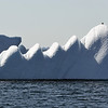 Solitary bird resting on saw-tooth iceberg in Baffin Bay, Greenland