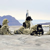 Dogs resting after crossing glacier on Disko Island