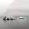 Icebergs in Burgerbukta (northern Hornsund), Svalbard