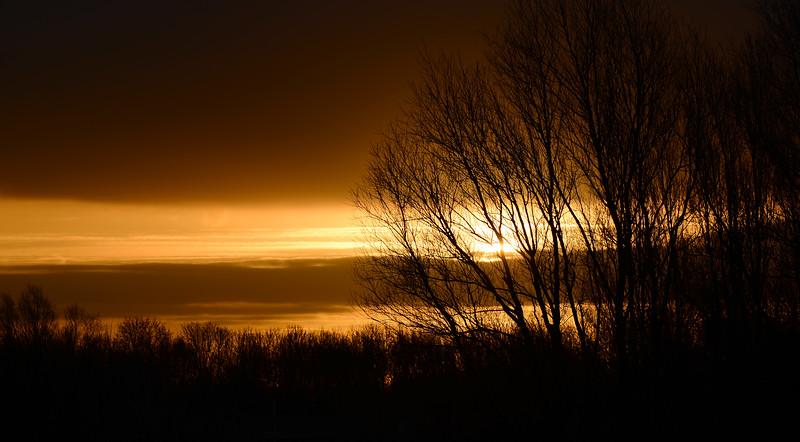 Summer sunrise, The Netherlands