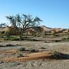 Desert scenery in the Sossusvlei area, Namibia