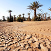 Dried up shallow wadi in desert oasis, southern Morocco
