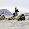 Dogs resting after crossing glacier on Disko Island