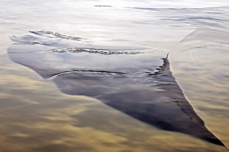 Emerging tidal flat in the Cook Inlet, <br /> southern Alaska