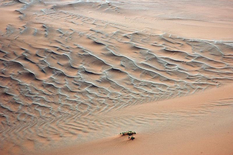 Sand ripples in the Namib desert, Namibia