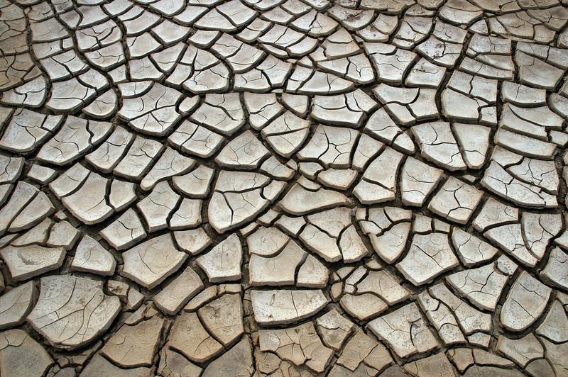 Mudcracks in dessicated wadi, Tunisia