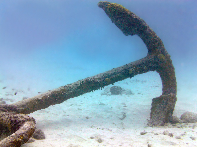 Coral encrusted old anchor resting on the seafloor, western Bonaire