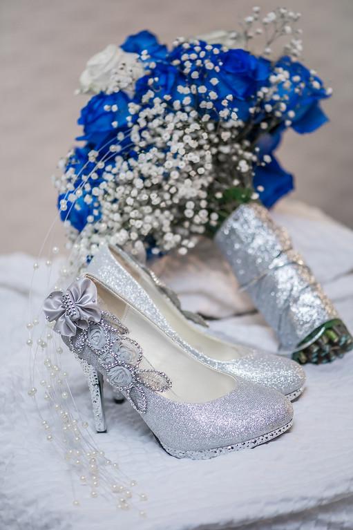 Theo and Raag's Wedding Photography