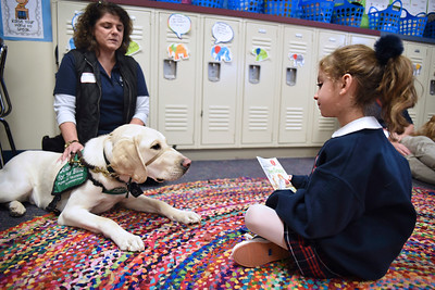 Ana Stanford reads a book to therapy dog Zeus during a vist to the 1st grade classroom Jan. 9 at All Saints Catholic School.