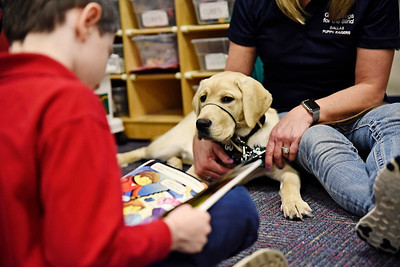 Reed Johnson reads a story to therapy dog ?? during a visit to the 1st grade at All Saints Catholic School Jan. 9.