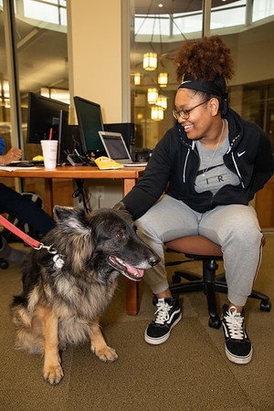 TherapyDogs-9445
