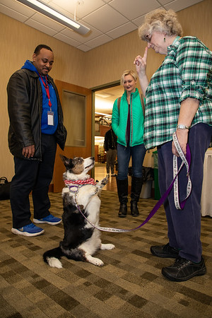 TherapyDogs-9178