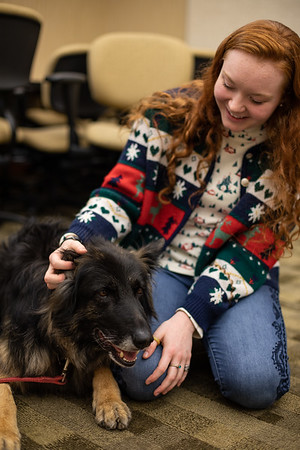 TherapyDogs-9367