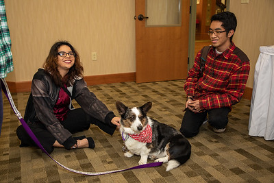 TherapyDogs-9219