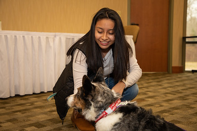 TherapyDogs-9241