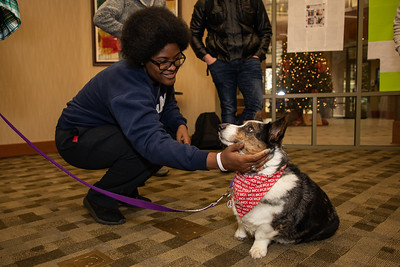 TherapyDogs-9278