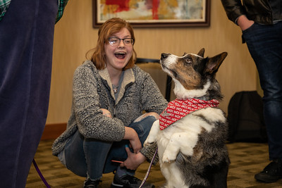 TherapyDogs-