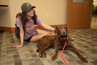 Therapy Dogs-8386