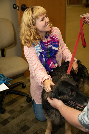 TherapyDogs-9454