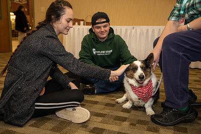 TherapyDogs-9292