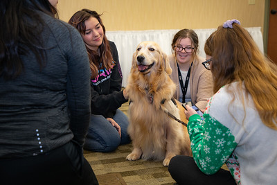 Therapy Dogs Sassy-7092