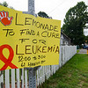 The Molinari Family, of Fitchburg, raised money for the Leukemia Lymphoma Society on Saturday afternoon with a lemonade stand on Hancock Street. Five-year-old Thiago Molinari has been battling Leukemia for three years now. SENTINEL & ENTERPRISE / Ashley Green