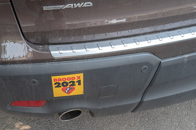 they have their own bumperstickers