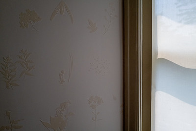 wallpaper and window