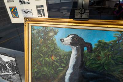 portrait of a doggo