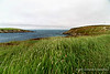 Ferryland Head, Newfoundland - the Path Across the Peninsula to the Lighthouse