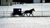 Mennonite Carriage From a Distance on a Snowy Day
