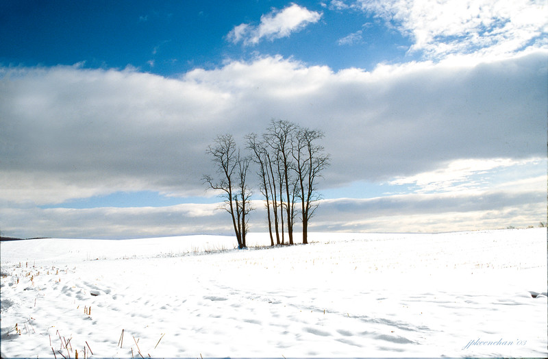 Snowfield Near the Town of Oley in Berks County, Pa